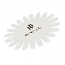 Палитра для лаков ромашка, матовая с логотипом